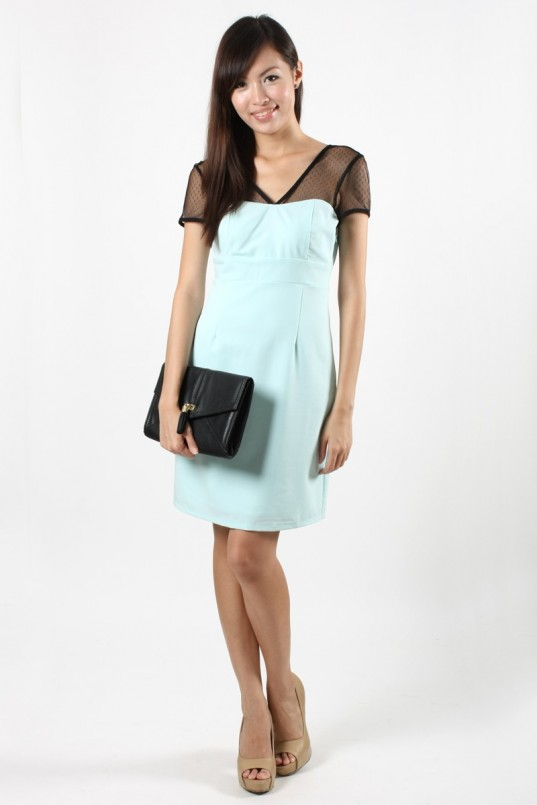 Mesh Bib Dress