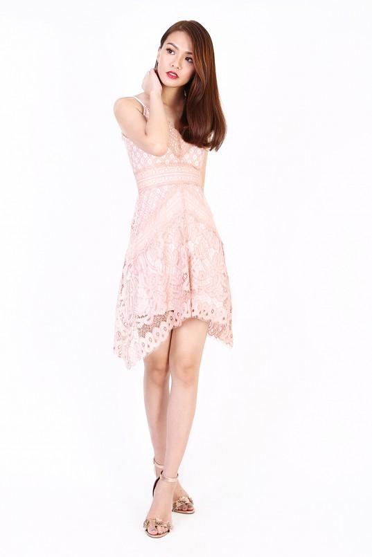 977ca93695 Alira Lace Dress in Nude Pink