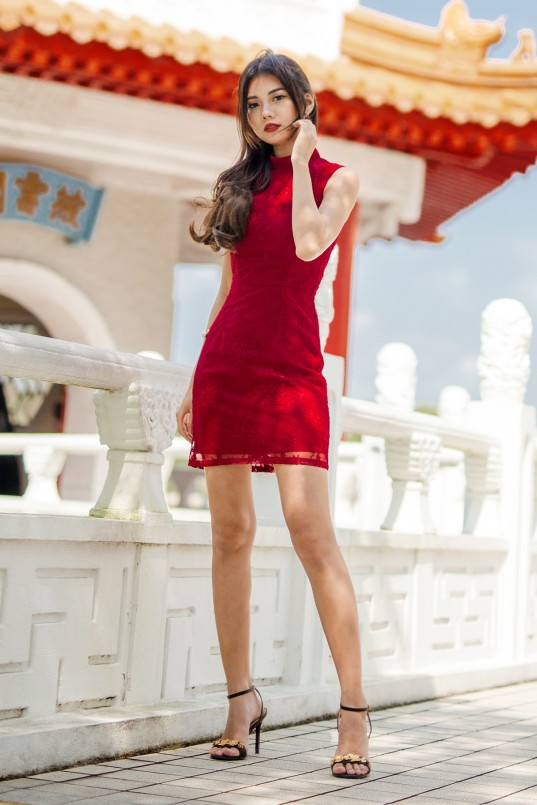 6fc5cd568e5 RESTOCK  Ivory High Neck Lace Dress in Red